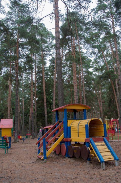 Детская площадка в сосновом бору